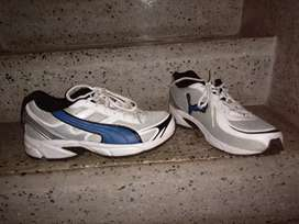 Puma new shoes 7 size