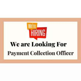 Need collection executive for field work