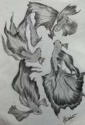 Pencile drawing