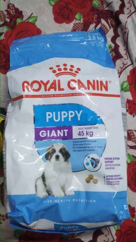 Dog and Cat Dry & Gravy Foods Available