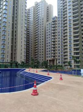 Excellent Fully furnished 3 bhk flat for rent in Bhartiya City