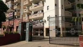 flat on rent with all facilities padra road near Narayan wadi stop