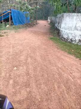 20cent plot for sale in mazhavannoor near kolanchery