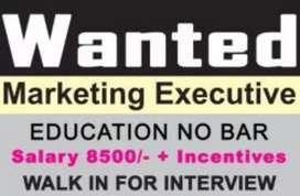 Wanted marketing executive around pallavaram
