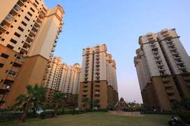 2 BHK Ready to Move Apartment for Sale in Noida Extension