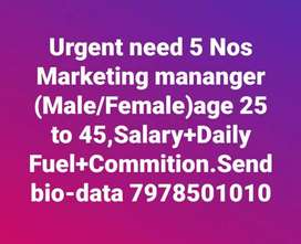 Urgently required marketing person meal and female
