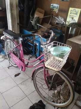 Di jual sepeda cewek pigeon