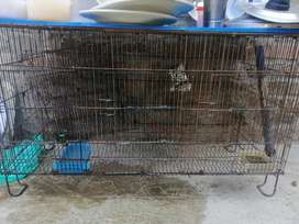 Different cages available