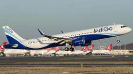Offering full time job in IndiGo Airlines Ground Staff for all.