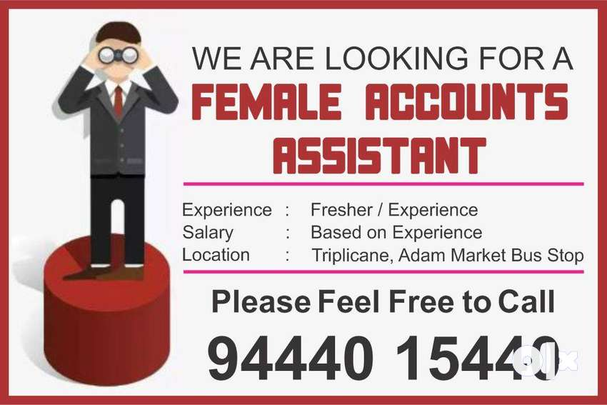 Account Assistant Fresher / Experience 0