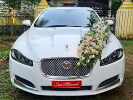 Luxury cars for wedding & other purpose