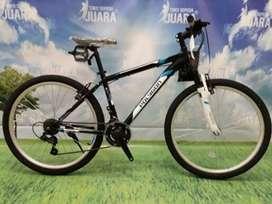 Beli Sepeda Gunung untuk Dewasa