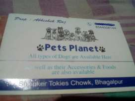All type of pet food available for sale