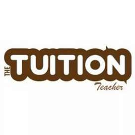Accountancy and commerce tutor needed