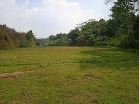 Tanah Sawah Air Mengalir di Darangdan Bojong Purwakarta Dijual Murah