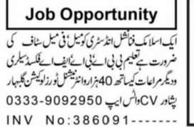 Jobs in Islamic Financial Industry  Female and Male