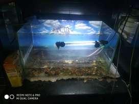 Aquarium marbals