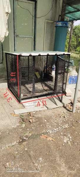 Dog cage / creat