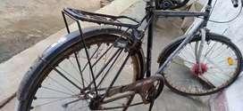 Avone cycle