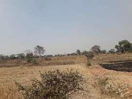 Mahadev ghat Amleshwar Agricultural land