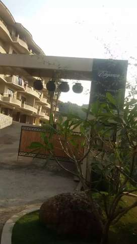 A very spacious fully furnished 2 bhk apartment  at donapaula