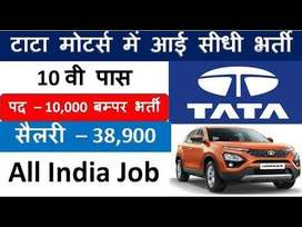 Hiring 260 Fresher Candidates In Tata Motors India Ltd. Apply Now