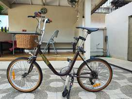 Pheonix Minion Bike Classic