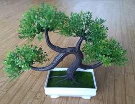 Tanaman bonsai mini (plastik)