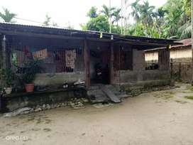 Urjent sell my house in Balipara Dhekrigaon