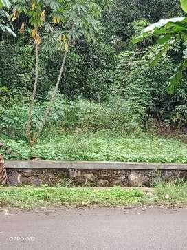 Tanah Strategis Bangun industri Pinggir Jalan Dekat Tol Kalijati ,
