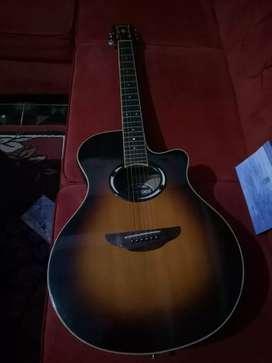 Gitar APX 500i original