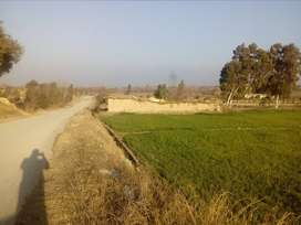 Cheap Agriculture Land for sale in Hasanabdal near Sabzpeer Road