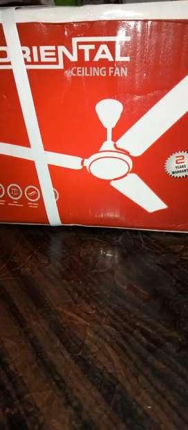 Oriental celling fan
