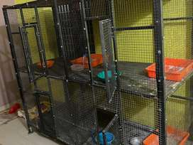 New large  4 door refixable  Pet cage For sale