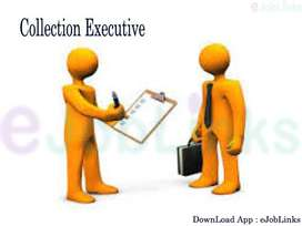 urgently hiring collection executives for banking process