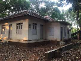 House for rent at shappumpady vengalloor