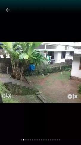 Aluva, kodikuthumala, 6,1/4 - cent land, bus road frondege for sale.