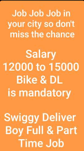 Swiggy Delivery Parteners