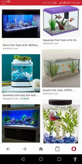 Fish tanks only