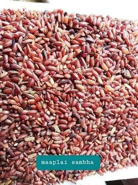 100%Organic Rice available Maaplai samba, Ponni, Idly rice