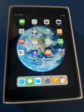 Apple I pad wifi based