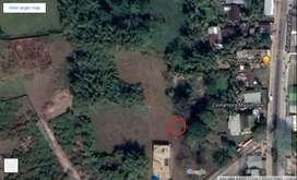 Residential plot sell ,Cinnamora, Jorhat,Assam, Single Owner
