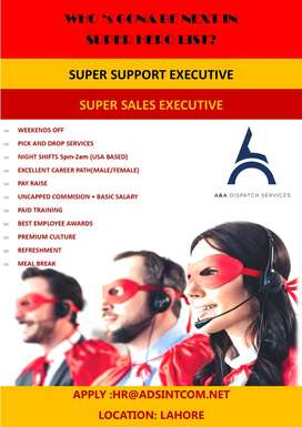 Customer Support/Sales Executives