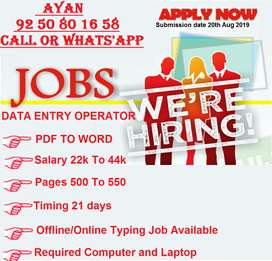 Catch The Opportunityto Get Extra Income with Data Entry at Home