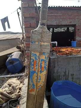Sport cricket bat