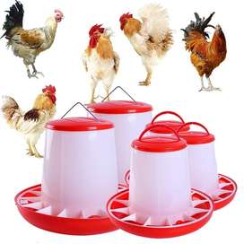 Chicken Hens Feeder & Drinker High Quality ABS Material Imported