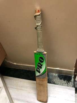 Cricket bat Kashmir Willow Duece Ball