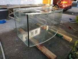 Tank aquarium cembung