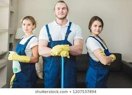 Restaurant washing and cleaning staff