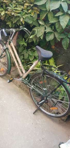 Government girls bicycle